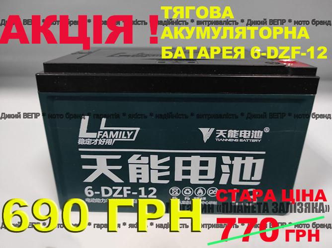 Тягова акумуляторна батарея 6-DZF-12 12V 12Ah до електровелосипед